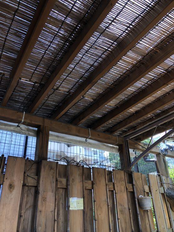 グラッパのテラス席天井